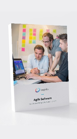 Agile Software Quality