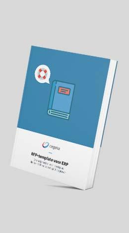 ERPEbookMockup_RFPTemlatev02.jpg