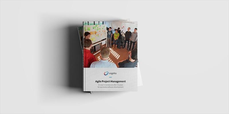 Agile Coaching Customer Cases